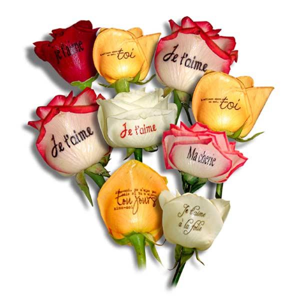 Envoyer des fleurs pour un anniversaire for Envoyer des roses