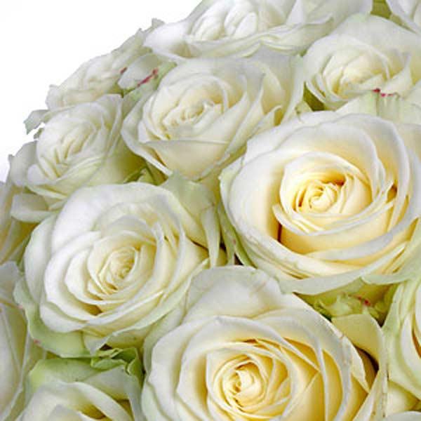 Offrir un bouquet de fleurs livraison de fleurs for Offrir un bouquet
