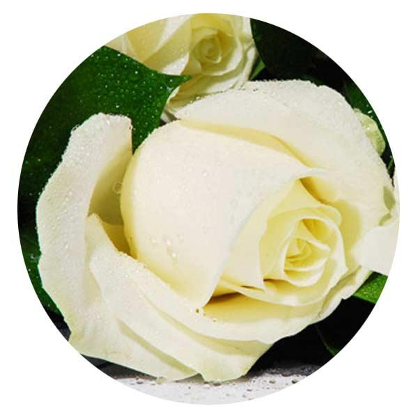 Joyeux Anniversaire En Fleurs Bouquet De Fleurs Pour Un Anniversaire Entrefleuristes