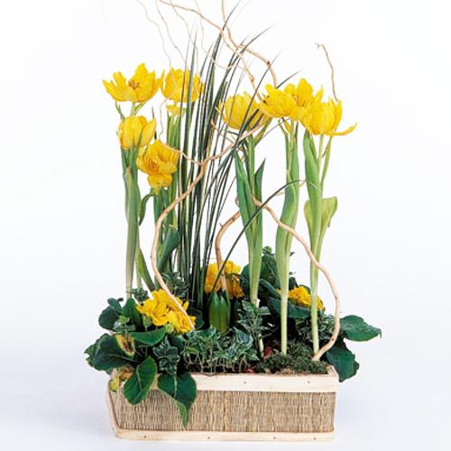 Livraison bouquet f te des mamies mamie ador e for Livraison fleurs paypal