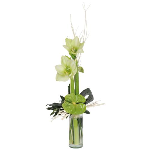 Livraison fleurs de saisons tulipes an mones renoncules for Amaryllis fleuriste