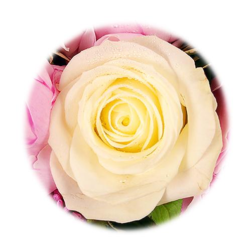 envoi assemblage de fleurs discount destin e florale entrefleuristes. Black Bedroom Furniture Sets. Home Design Ideas