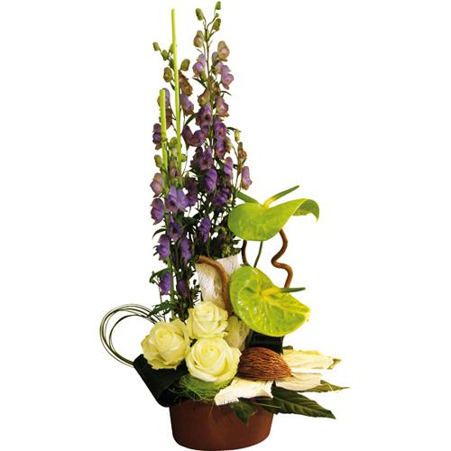 Livraison composition florale composition florale saphir for Livraison fleurs paypal