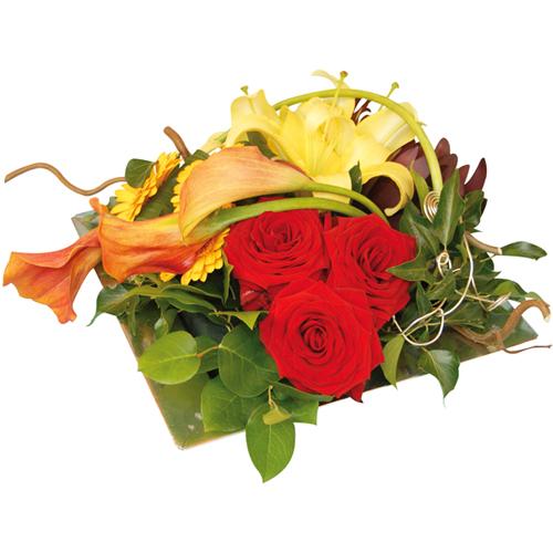 Livraison fleurs agate entrefleuristes for Livraison fleurs paypal
