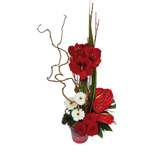 Composition florale rouge et blanche avec gerberas roses for Amaryllis de noel