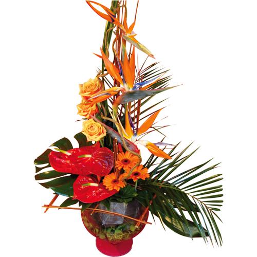 livraison composition exotique avec oiseau du paradis anthurium et autres fleurs entrefleuristes. Black Bedroom Furniture Sets. Home Design Ideas