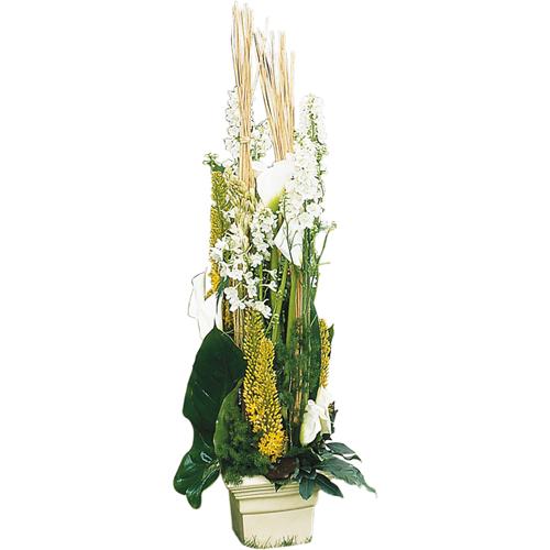 Livraison de bouquet de fleurs livraison de fleurs opale for Livraison fleurs paypal