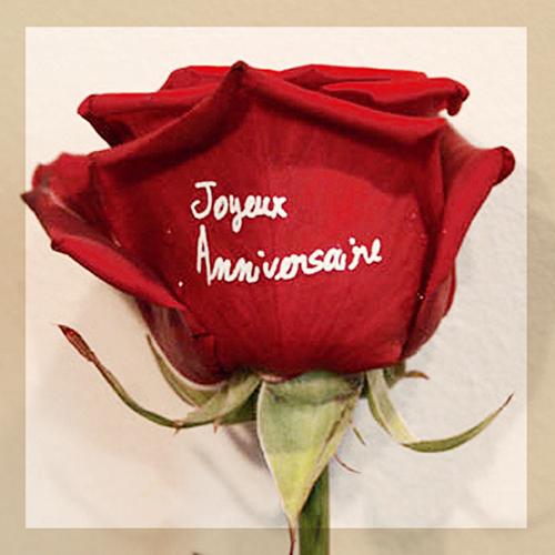Rose Rouge Marquee Joyeux Anniversaire Blanc Entrefleuristes