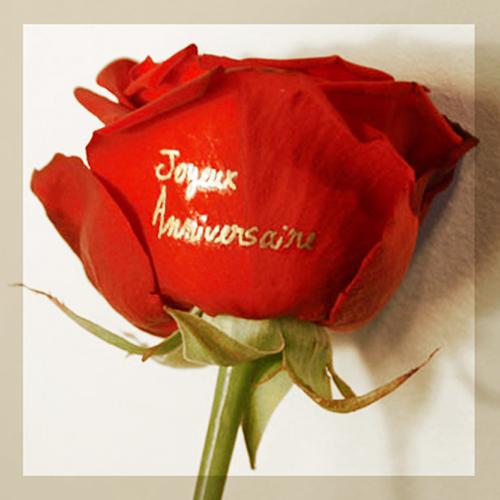Carte Anniversaire Bouquet De Roses.Rose Rouge Inscription Joyeux Anniversaire Dore