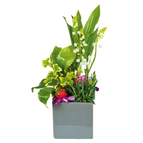 composition muguet racine dans les tons vert rose et blanc avec muguet racine et autre plantes. Black Bedroom Furniture Sets. Home Design Ideas