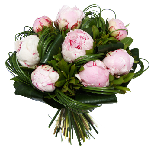 Bouquet rond de pivoines rose