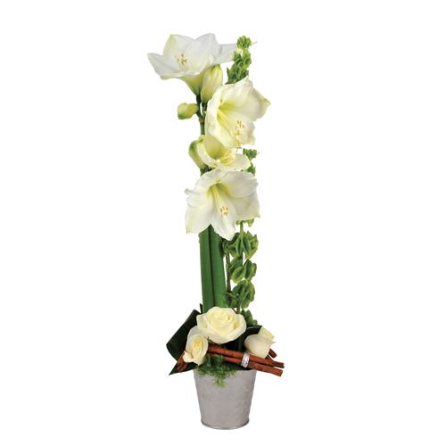 composition de fleurs moderne dans les tons de blanc avec rose amaryllis et cannelle. Black Bedroom Furniture Sets. Home Design Ideas