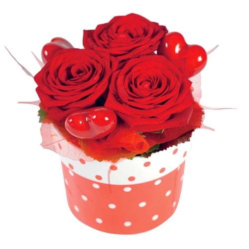Roses rouges et roses blanches qualit extra for Livrer une rose
