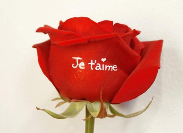 Idee Originale Roses Marquees Je T Aime En Blanc Livraison De Vos