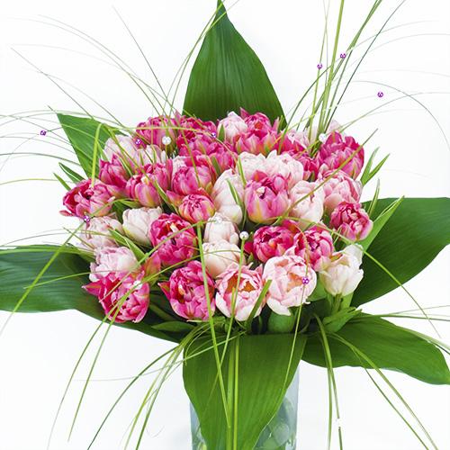 Livraison fleurs de saisons tulipes an mones renoncules for Livraison tulipes