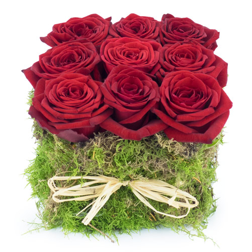 Roses rouges et roses blanches qualit extra for Fleurs livrees