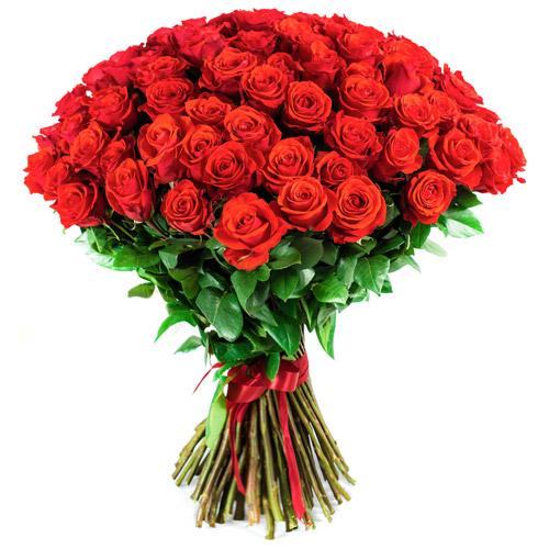 roses rouges et roses blanches qualité extra