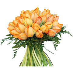 Bouquet de tulipes orange Joli