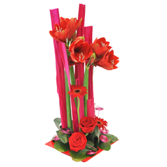 composition d'amaryllis rouge moderne