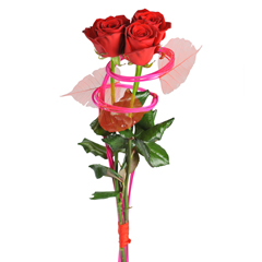 faire livrer  roses rouges originales Ma princesse